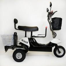 Трицикл EL-Sport SF8 Maxi 500W