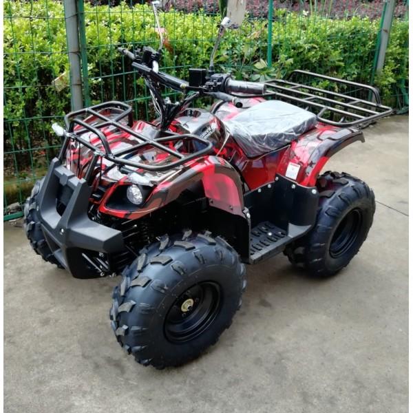 Электроквадроцикл GreenCamel Atakama T120 800W фото