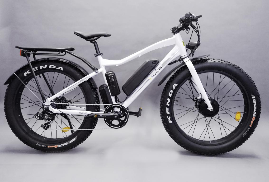 Электровелосипед Е-мотионс ФАТ 26 Доубле фото